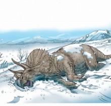 Hector-Gomez-Osnei-Roko-ilustração-sketchbook-photoshop-Editora-Abril-Livro-dinossauros-2009
