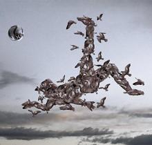 Hector-Gomez-ilustração-photoshop-Neogama-Umbro-revista-Bicicleta-2005