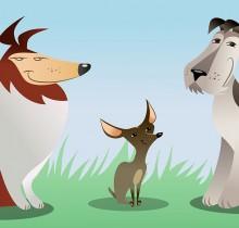 Yahoo dogs